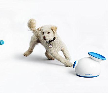 iFetch Interactive Ball Launcher for Dogs – Launches...